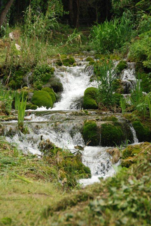 Wasser in der Natur